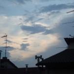 tetti cielo